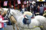ranchfest2011_015
